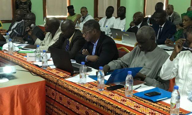 Réunion des collèges  du comité de bassin du  fleuve Sénégal