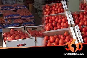 Nouakchott: le marché des fruits et légumes retrouve ses couleurs